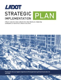 Strategic Implementation Plan - June 2018
